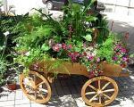 Izložbom cveća, završeni Sajamski dani u Nišu