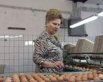 Докторка чува кокошке на фарми