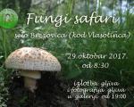 """Јесењи """"Fungi safari"""" у Власотинцу"""