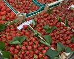 Дани јагоде у Крађорђевцу крај Лесковца