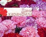 """Јужњачки севдах и Каранфил девојче: """"Дани каранфила"""" од 15. до 18. августа у Врањској Бањи"""