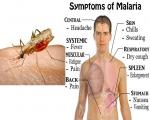 Мигрант у Прешеву заражен маларијом