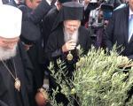 Патријарси Вартоломеј и Иринеј засадили на Зејнтилику младицу маслине, симбол мира (ФОТО)