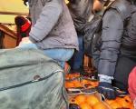 """Među mandarinama i pomorandžama 12 """"slepih putnika"""" iz Sirije"""