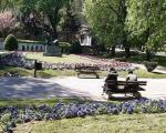 Уређење нишких паркова