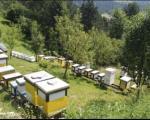 Сајам пчеларства југоисточног Балкана у Врању