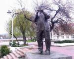 Младић у Нишу се толико обезнанио од алкохола да је интервенисала Хитна помоћ