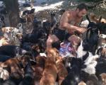 Нишлија брине о 800 напуштених паса