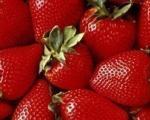 Održani Dani jagodičastog voća