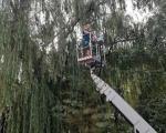 """Због безбедности деце исечене труле гране на дрвећу у ОШ """"Свети Сава"""""""