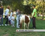 Светски дан заштите животиња (ВИДЕО)
