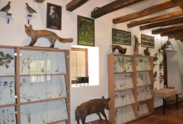 Отворен Центар за посетиоце заштићеног подручја у манстиру Прохор Пчињски