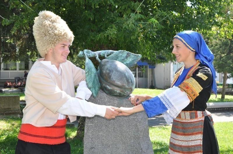 """Željko Joksimović i Balkanika na 17. """"Danima šljive"""" u Blacu"""