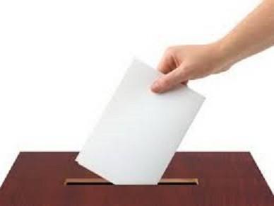 Danas ponavljanje izbora za poslanike u tri niške opštine, Aleksincu, Merošini i Ražnju
