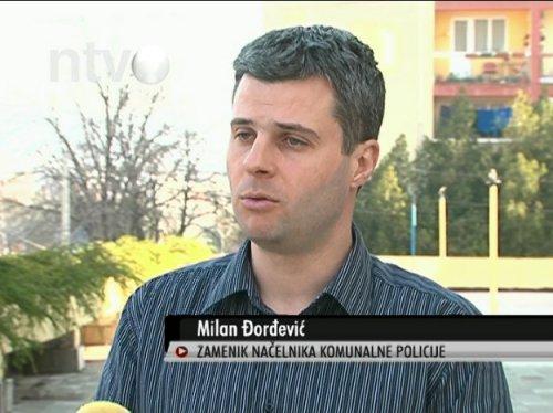 Милан Ђорђeвић, НТВ