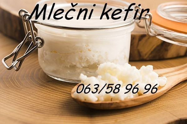 """Kefirna zrnca za pravljenje 1L mlečnog kefira"""" Tibetanska gljiva"""""""