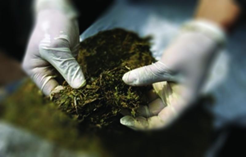 Пронађено скоро пола килограма марихуане и новац од продаје