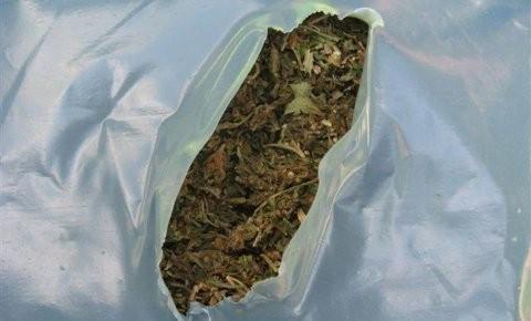 Прешевци ухапшени код Дољевца, са скоро килограм марихуане