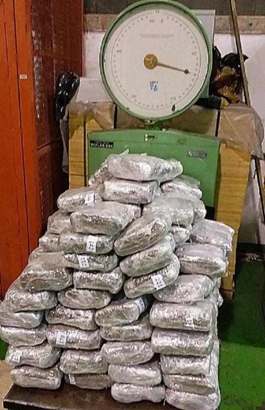 Na Gradini otkriveno skoro 600 kilograma marihuane u dva ''prazna'' kamiona