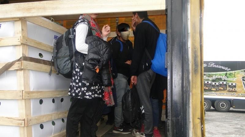 Мигранти на међу лубеницама, котуровима и металним жицама
