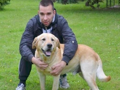 Куршумлија: Храбри пас спасао газду заробљеног испод трактора