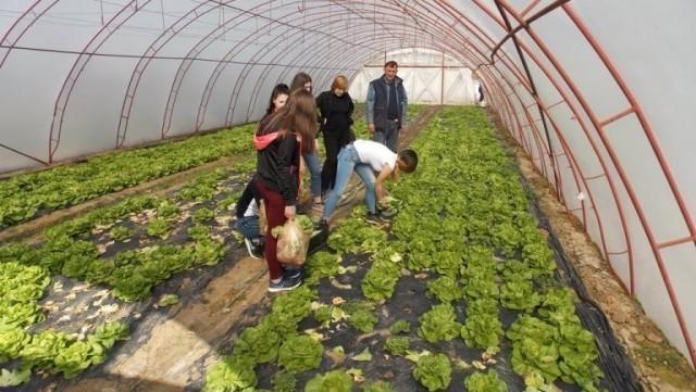 Пракса за ученике Пољопривредне школе у Прокупљу најбитнија за проширење знања
