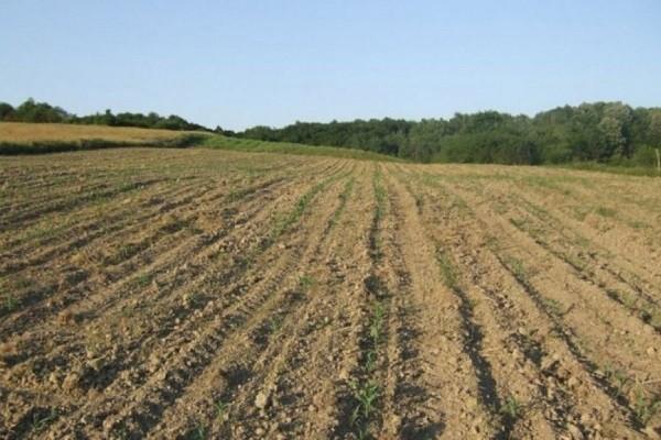 Za besplatnu analizu zemljišta javio se manji broj ljudi