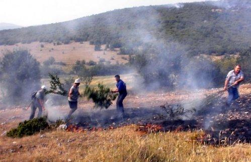 Požar na polju, Foto: Pirotske Vesti