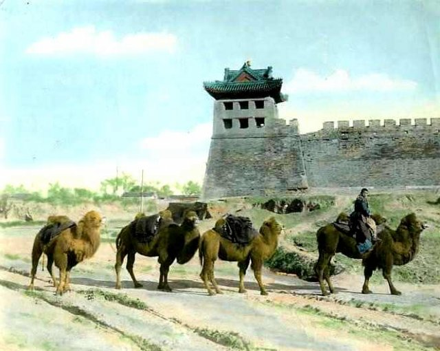 Фото: histclo.com