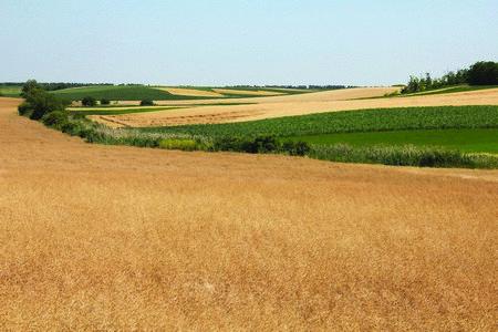 Општина Блаце даје плодну земљу у закуп