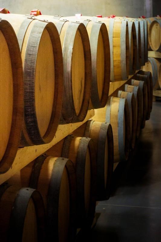 """Nova priznanja vinima """"Topličkih vinograda"""""""
