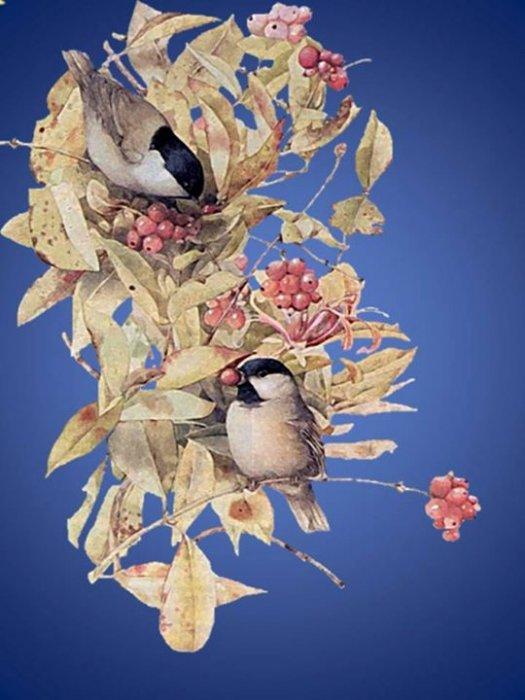 Сретење обретење, данас се срећу зима и лето, а врапци венчавају и певају!