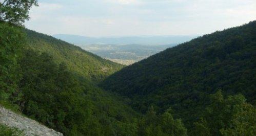 Foto: Vesnik