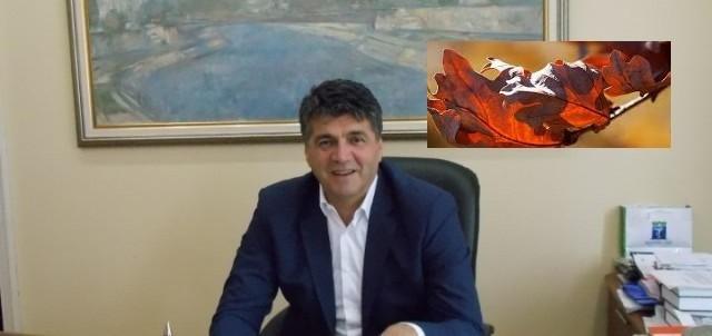 Божићна честитка градоначелника Ниша