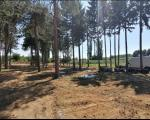 "Uskoro ""Avantura park"" u Leskovcu"