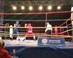 Млади боксери из бивше Југославије у Лесковцу - Омладинска златна рукавица