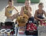 Dnevna doza lepog: Mali heroji prodaju voće i kupuju hranu za napuštene pse