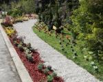 Pas likvidirao piliće ukrasnih paunovova i koka u Gradskoj bašti u Nišu