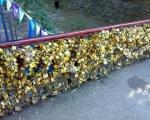 Катанци љубави и на мосту у Лесковцу