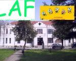 """LAF upozorava na partijski izbor nepodobnih direktora """"Doma učenika"""" i """"Pčelice"""""""
