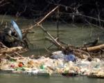 """Јужна Морава опет је """"тужна"""" – њоме плутају флаше, гуме и други отпад"""