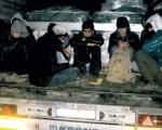 Uhapšeni krijumčari Iračana