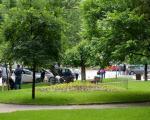Богато оплемењивање паркова у Прокупљу