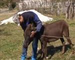 Ponosni dečak iz Vrmdže kod Sokobanje dobio kuću (VIDEO)