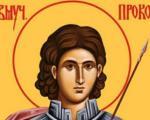 Плакетa Светог Прокопија проти Слободану Петровићу