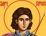 Данас је Свети Прокопије - Прокупље обележава градску славу
