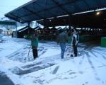 Sneg očišćen, pijace rade normalno