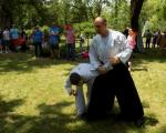 Aikido idealan izbor