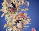 Sretenje obretenje, danas se sreću zima i leto, a vrapci venčavaju i pevaju!