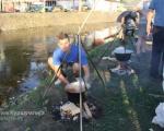 """Куршумлијски """"Златни котлић"""": Риболовци на """"Велику Госпојину"""" показали вештину у спремању рибље чорбе"""